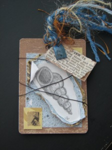 Sea Shell Tag 3