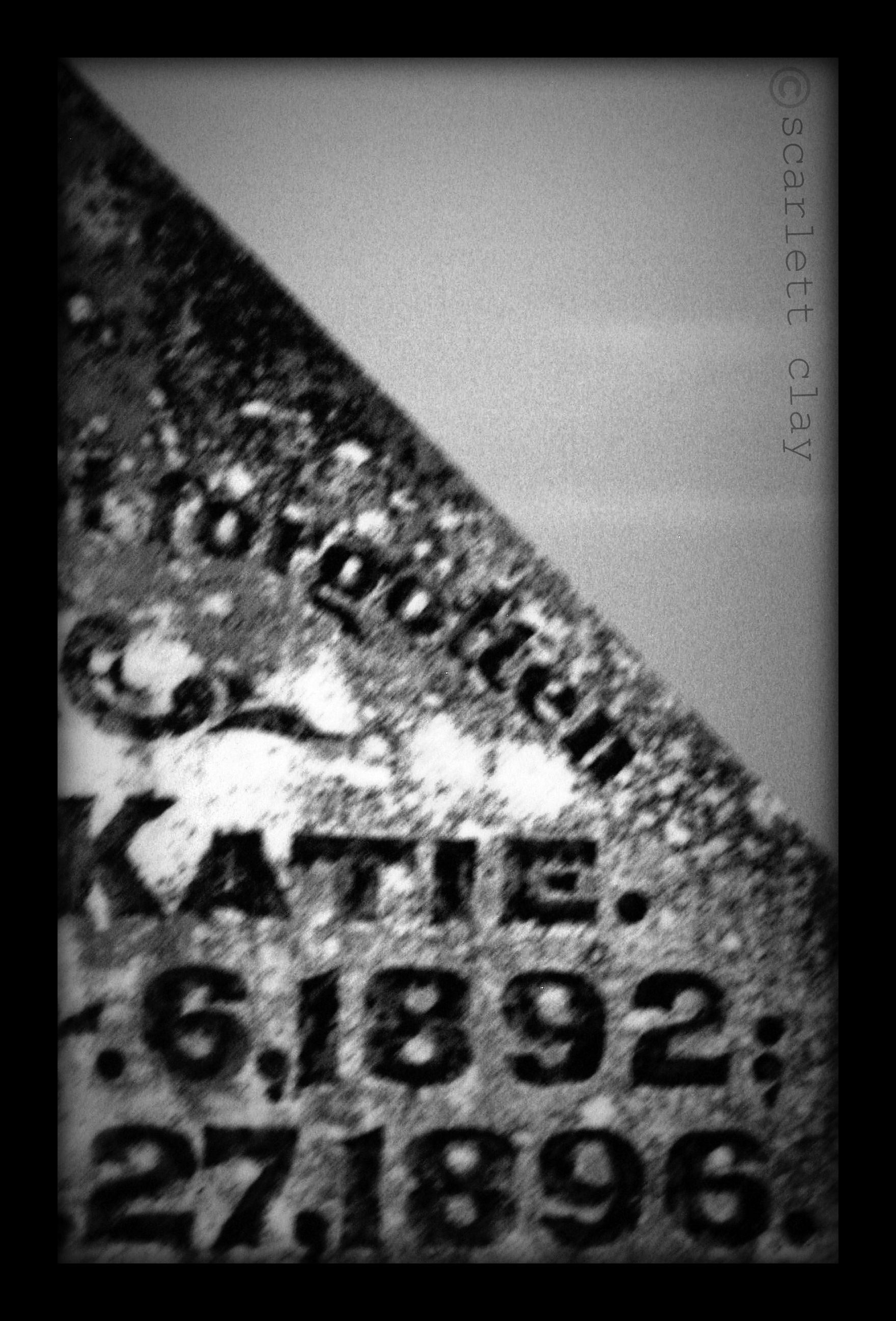 photo class-last project katie