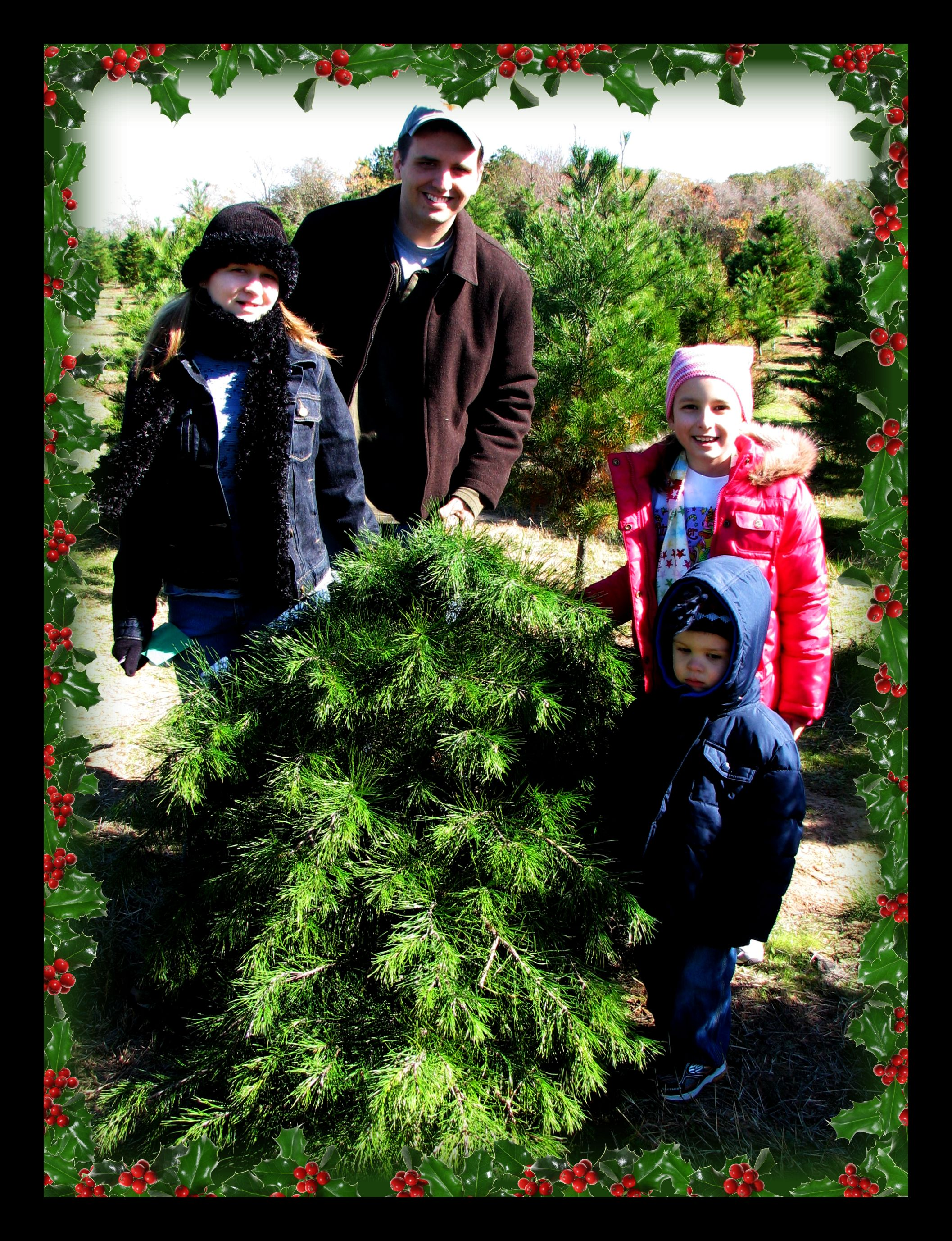 Photos Trip to the Elgin Christmas Tree Farm ZaX1RpOJ