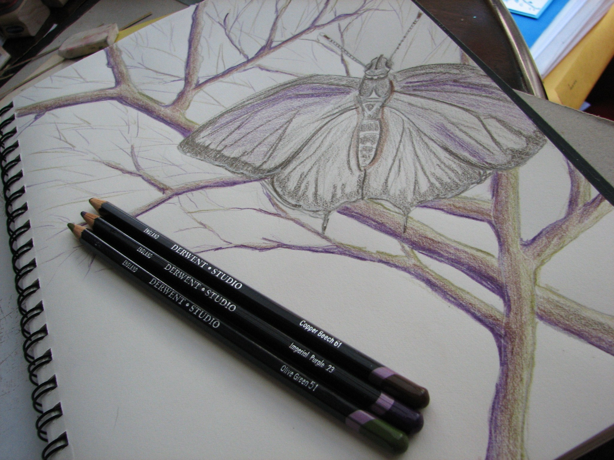 butterfly drawing with hydrangea petals art is medicine